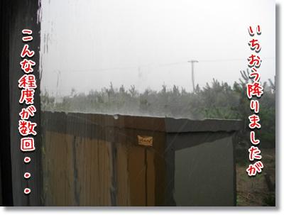 強い雨は4、5回でした